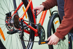 Bike chain repair or adjustment Stock Photo