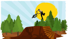 Bike dirt vector jump. Vector illustration of the biker doing the trick in the air. This trick is called tai lwhip. Its fully editable if you download the Stock Photo