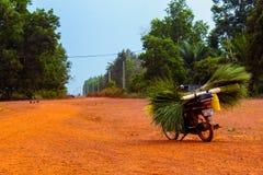Bike on empty road Stock Photos