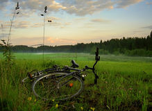 Bike on field Royalty Free Stock Photo