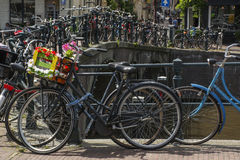 Bike with flower basket on the street near the canal Stock Image