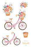 Bike with flowers in basket,bouquet. Beautiful floral collection. Bike with flowers in basket,bouquet .5 Lovely illustrations for your design.Perfect for wedding royalty free illustration