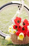 Bike with flowers in a basket Royalty Free Stock Image