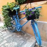 Bike and flowers Royalty Free Stock Images