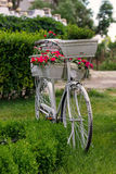 Bike with flowers Stock Images