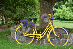 Bike with flowers. Old bicycle with flowers in a garden Royalty Free Stock Photos