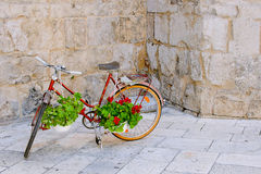 Bike with flowers. Royalty Free Stock Images