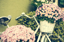 Bike with flowers Royalty Free Stock Images
