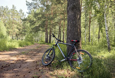 Bike in forest side view Royalty Free Stock Photos