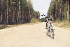 Bike on a forest trail in the morning. Bicycle riding in nature.  stock photo