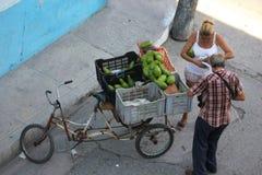 Bike Fruit seller Royalty Free Stock Images