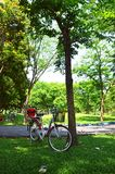 Bike in garden park Royalty Free Stock Photography