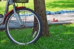 Bike in garden park. Vachirabenjatas Park (Rot Fai Park royalty free stock photography