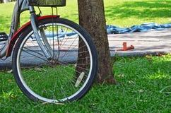 Bike in garden park Royalty Free Stock Photography