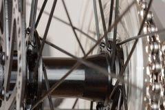 Bike hub of rear wheel, close up view, studio photo. Bike hub of rear wheel, close up view, studio photo Royalty Free Stock Photos