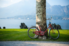 Bike in Italy Stock Image