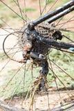 bike la prospettiva biking della montagna delle mani della foresta del fuoco del campo di profondità del ciclista poco profonda Fotografia Stock