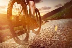bike la prospettiva biking della montagna delle mani della foresta del fuoco del campo di profondità del ciclista poco profonda Fotografie Stock