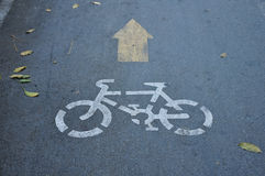 Free Bike Lane Royalty Free Stock Photos - 16840128