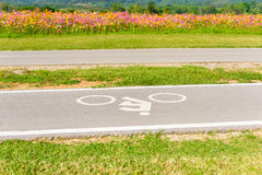 A bike lane for cyclist. Bicycle lane in the park Stock Photography