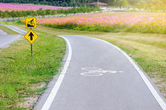 A bike lane for cyclist. Bike lanes symbol. Bicycle lane in the park with field of flowers Stock Photo