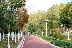 The bike lane stock photography