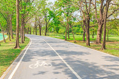 Bike lane in the park. In Bangkok Royalty Free Stock Photos