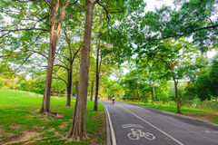Bike lane and pathway in the Green Park Royalty Free Stock Photos