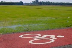 Bike lane close up. Bike lane in rural of Supanburi,Thailand.Beautiful rice farm background Royalty Free Stock Images