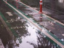 Bike lane sign and wet after rain.  Royalty Free Stock Photo