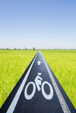 Bike lane throuth rice field Stock Photo