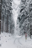 Bike lane in the winter forrest with retro faded look Royalty Free Stock Image