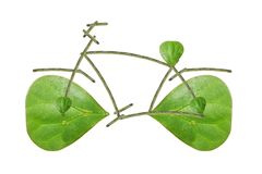 Bike leaves Stock Photos