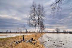 Bike lying on grass Royalty Free Stock Photo
