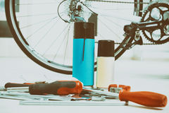 Bike maintenance Royalty Free Stock Photo