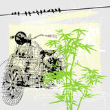 Bike and marijuana Royalty Free Stock Photos