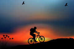 Bike on the meadow. With sunset background Royalty Free Stock Image