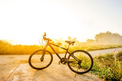 Bike in the meadow Royalty Free Stock Photos