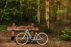 Bike near the wood bench. In the autumn forest stock photo