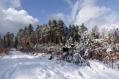 Bike off the trail buried in snow in winter scenery Royalty Free Stock Photo