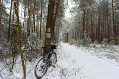 Bike off the trail buried in snow in winter scenery Stock Images