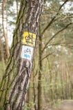 Bike paintings on tree Royalty Free Stock Photo