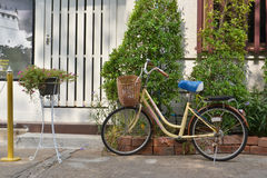 Bike in park. Shooting in Thailand Stock Image