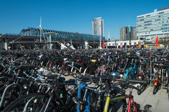 Bike parking Amsterdam Stock Image