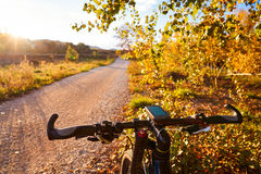 Bike at Parque de Turia of Valencia park sunset Stock Photos
