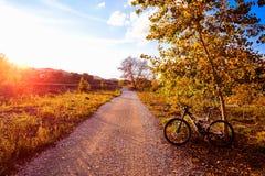 Bike at Parque de Turia of Valencia park sunset Stock Images