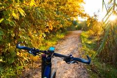 Bike at Parque de Turia of Valencia park sunset Royalty Free Stock Photos