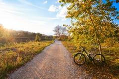 Bike at Parque de Turia of Valencia park sunset Royalty Free Stock Image
