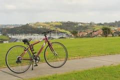 Bike pasando por alto el puerto deportivo, Whangaparaoa, Auckland, Nueva Zelanda Imagenes de archivo