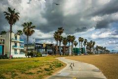 Bike path along the beach in Venice Beach  Royalty Free Stock Photography